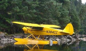 Top Cub 顶级型小熊飞机